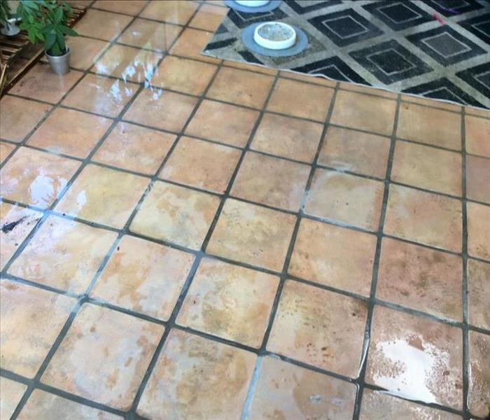 water on the floor