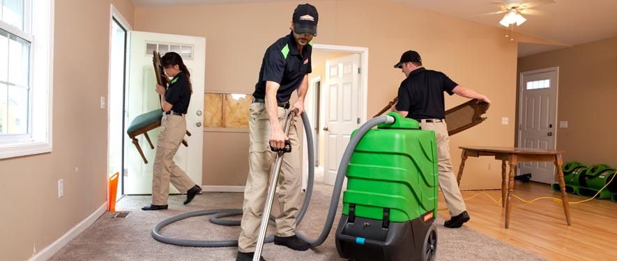 Marina, CA cleaning services